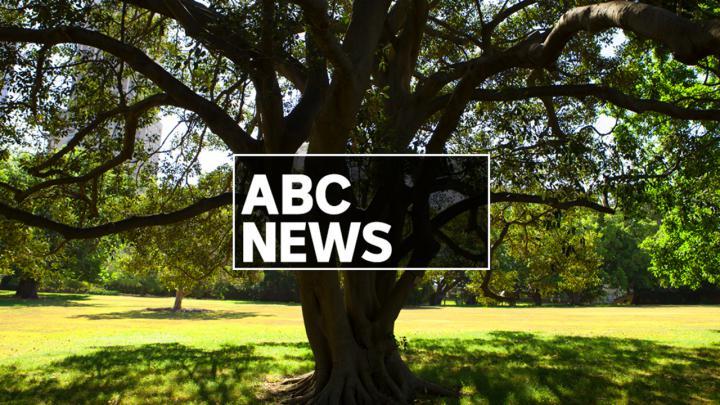ABC News Weekend