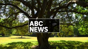 ABC News Weekend
